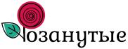 Интернет-магазин Розанутые